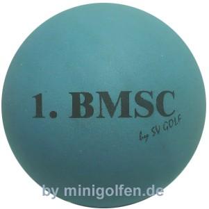 SV 1.BMSC