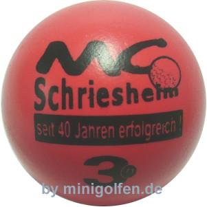 3D 40 Jahre MC Schriesheim