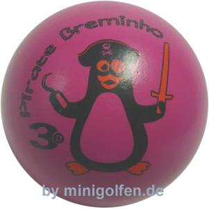 3D Pirate Breminho