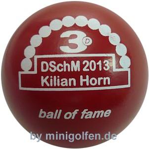 3D BoF DSchM 2013 Kilian Horn
