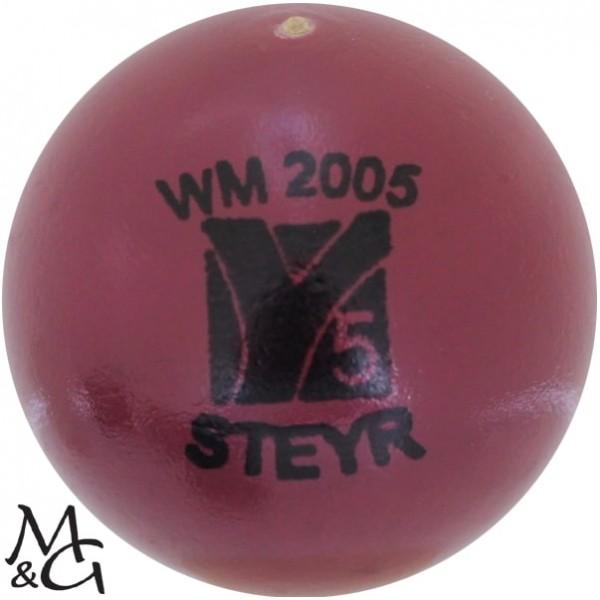 mg WM 2005 Steyr 5