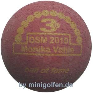 3D BoF DSM 2010 Monika Vahle