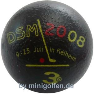 3D DSM 2008 Kelheim
