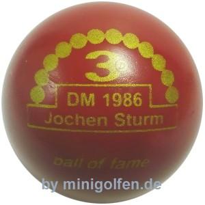3D BoF DM 1986 Jochen Sturm