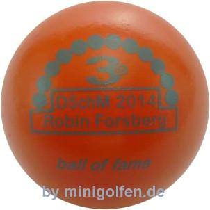 3D BoF DSchM 2014 Robin Forsberg