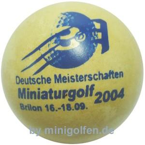 3D DM 2004 Brilon