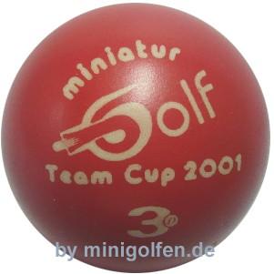 3D Team-Cup 2001