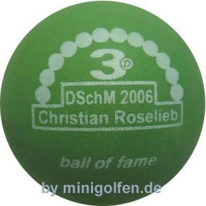 3D BoF DSchM 2006 Christian Roselieb