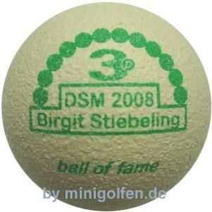 3D BoF DSM 2008 Birgit Stiebeling
