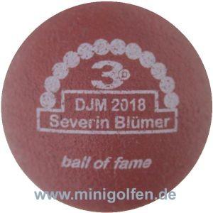 3D BoF DJM 2018 Severin Blümer