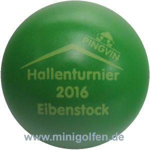 Pingvin Hallenturnier Eibenstock 2016