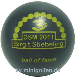 3D BoF DSM 2011 Birgit Stiebeling