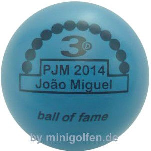 3D BoF PJM 2014 Joao Miguel