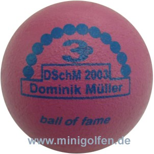 3D BoF DSchM 2003 Dominik Müller