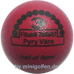 3D BoF FiSchM 2006 / 2007 Pyry Väre