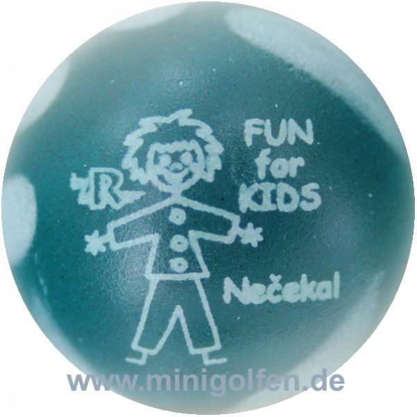 Reisinger Fun for Kids Necekal
