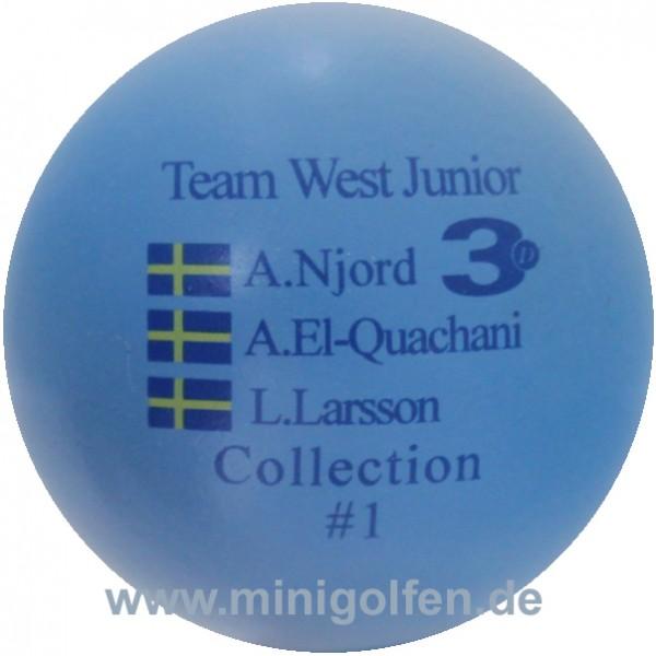 3D Team West Junior #1