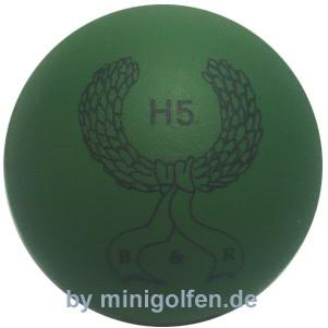 B&R H5