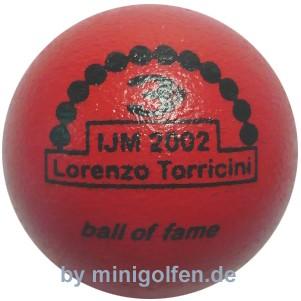 3D BoF IJM 2002 Lorenzo Torricini