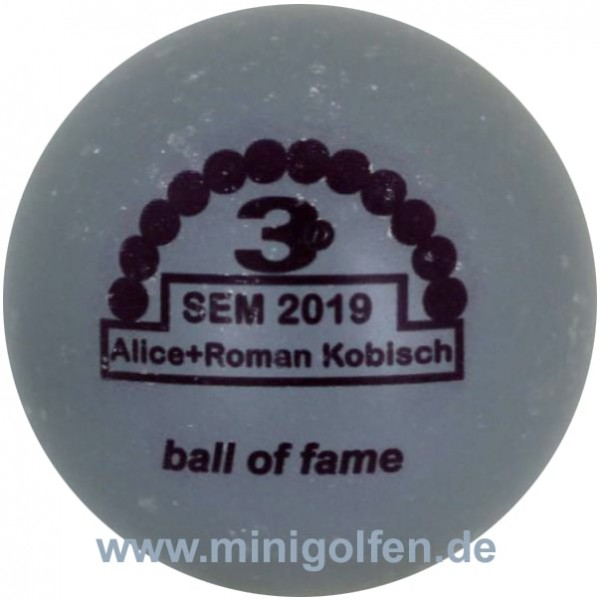 3D BoF SEM 2019 Alice+Roman Kobisch