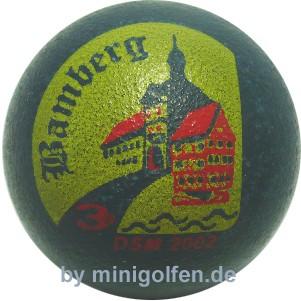 3D DSM 2002 Bamberg