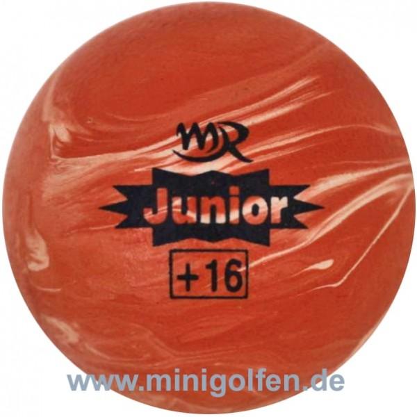 mr Grenchen Junior +16