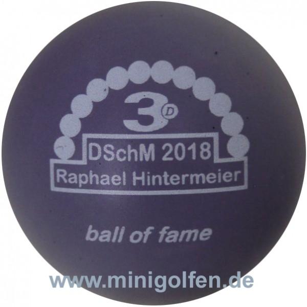 3D BoF DSchM 2018 Raphael Hintermeier