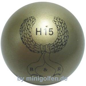 B&R H15